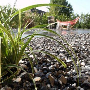 Gartenbau Nachher 1
